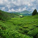 mountain 2289495 1920 128x128 - Malaysia Is The Perfect Destination For Adventure Lovers!
