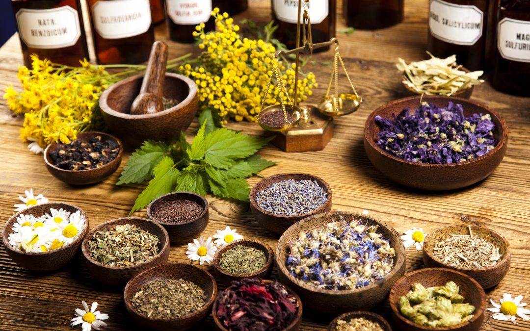 Traditional VS Modern Medicine